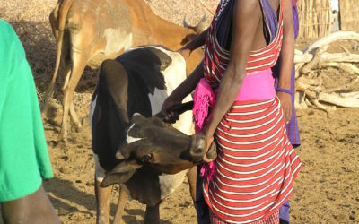 Behaviour change and biosciences to tackle zoonoses