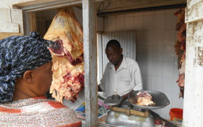 Making meat safety work in low-resource contexts: trust, training and selective enforcement